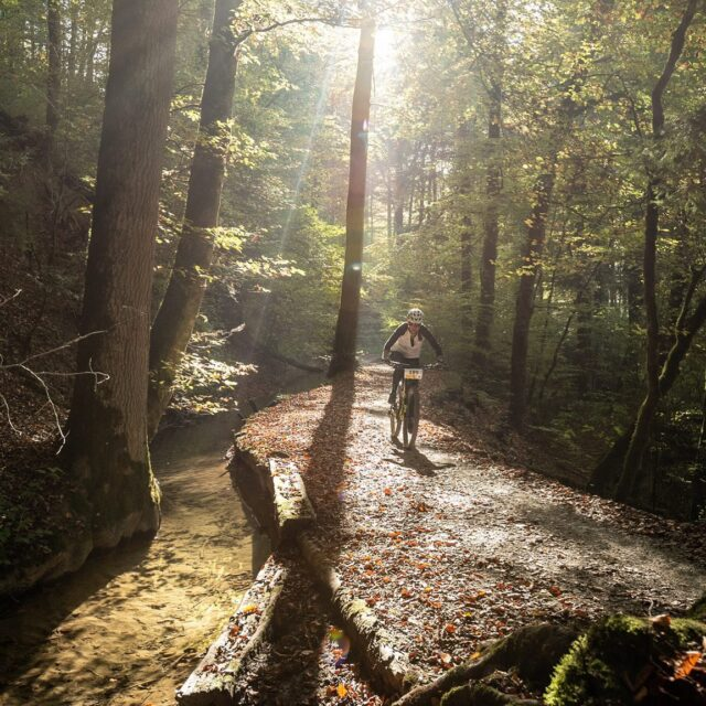 The sun is shining!  Spring is here ☀️ Lets go out and enjoy your gravel ride! 😍 📸: @buchlifotografie #gravel #gravelracing #gravellove #gravelcycling #gravelgrinder #gravellife #cycling #cyclinglife #cyclinglifestyle #bern #allianz #allianzversicherung